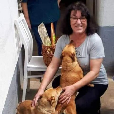Csilla, 55 éves társkereső nő - Sárospatak